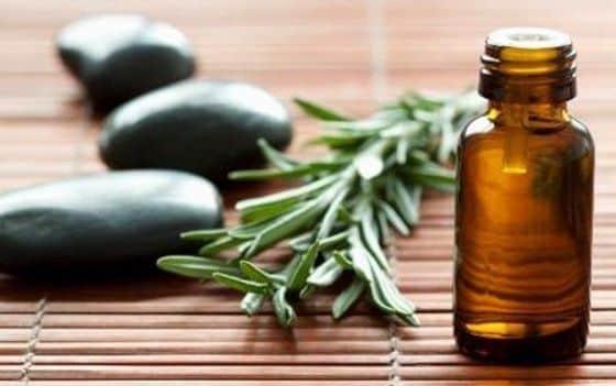 óleo-essencial-de-alecrim-