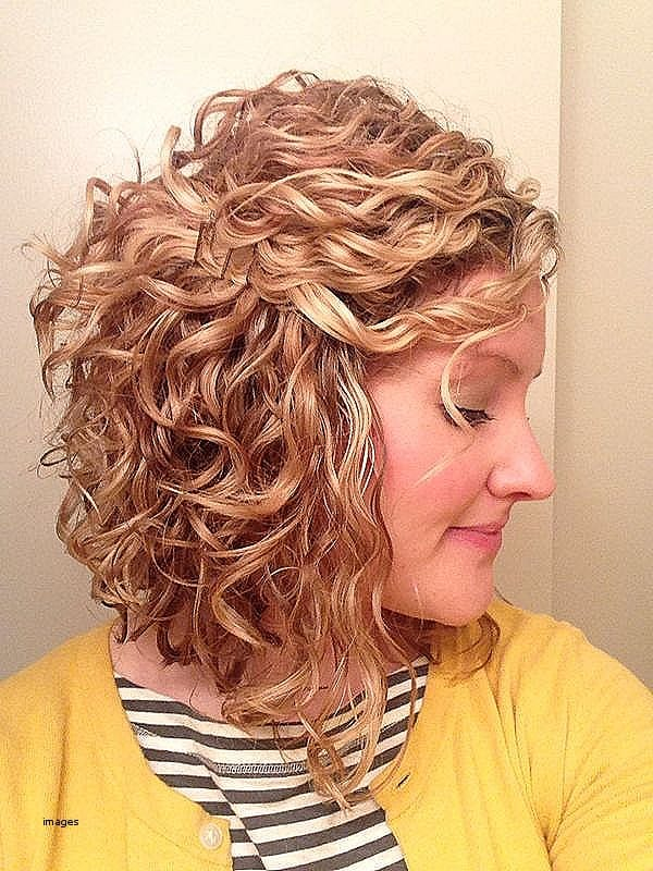 Braid Hairstyles For Short Curly Hair Elegant Women Hairstyles Natural Curly Hairstyles Braids How to Set